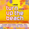 538 Turn Up the Beach 2013 - Verschillende artiesten