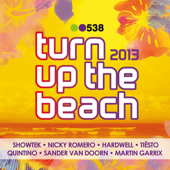 538 Turn Up the Beach 2013