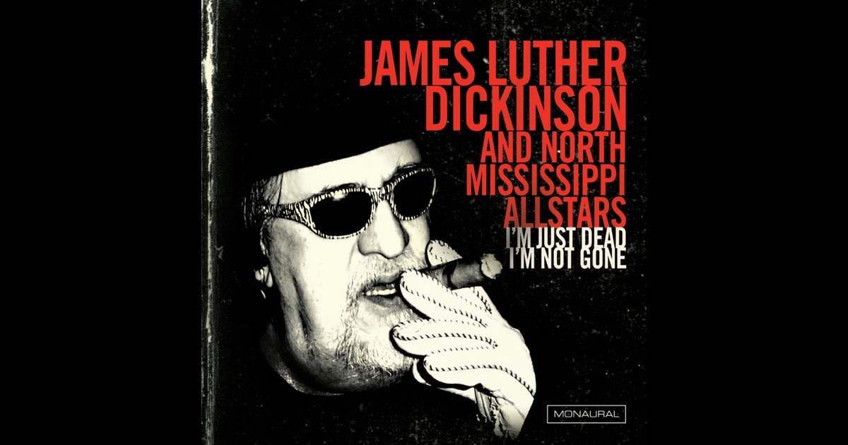 James Luther Dickinson Dixie Fried