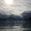 Synthetic Orchestra - Single - Tommy Grissom