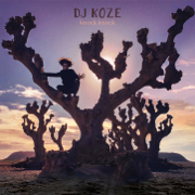Knock Knock - DJ Koze - DJ Koze