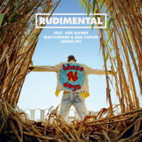 Rudimental - These Days (feat. Jess Glynne, Macklemore & Dan Caplen) [AJR Remix]