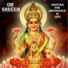 Om Shreem Mantra for Abundance in Life