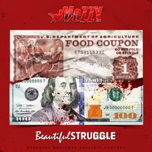 Beautiful Struggle Mp3 Download