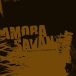 Amora Savant - The Immaculate Misconception