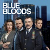 Blue Bloods, Season 6 wiki, synopsis