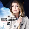 Grey's Anatomy, Season 12 wiki, synopsis