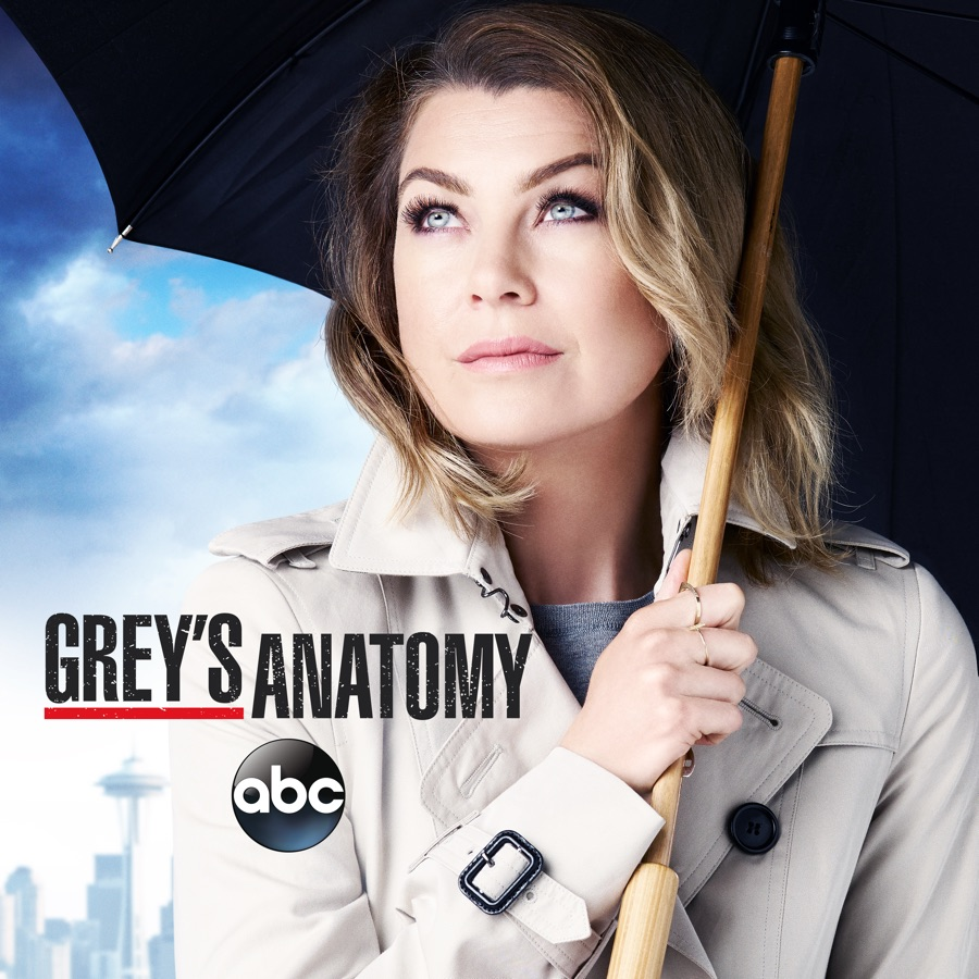 GreyS Anatomy 12 Streaming