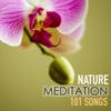 Nature Meditation 101 Songs - Spa Music Relaxation Meditation