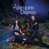 The Vampire Diaries, Season 3 - Synopsis and Reviews