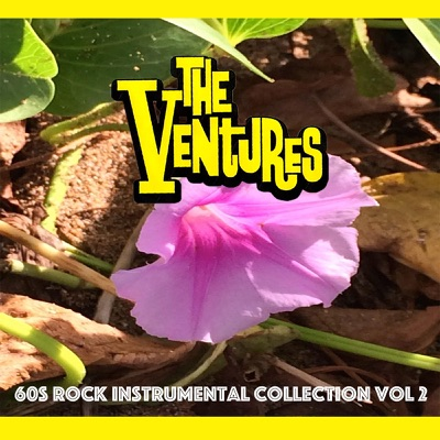 60s Rock Instrumental Collection, Vol. 2 - The Ventures