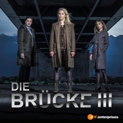 Die Brücke - Transit in den Tod, Staffel 3 (Langfassung)