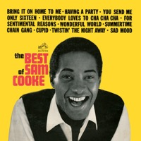 Sam Cooke: The Best of Sam Cooke (iTunes)