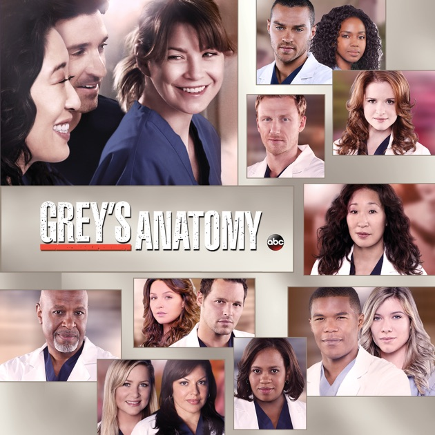 Greys Anatomy Staffel 10