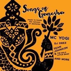 Ganesha Windmix (Rara Avis & Shaman's Dream Remix)