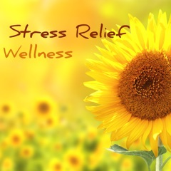 Stress Relief Wellness - Music for Better Mental Health, Dealing With Anxiety and Chronic Stress to Relax