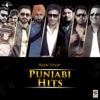 Non Stop Punjabi Hits