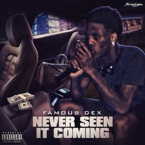 Never Seen It Coming Mp3 Download