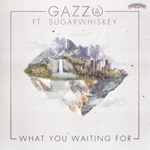 What You Waiting For (feat. SUGARWHISKEY) - Single Mp3 Download