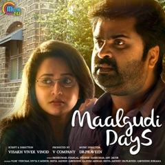 Maalgudi Days (Original Motion Picture Soundtrack)