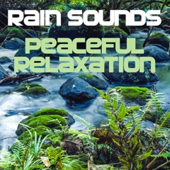 Rain Sounds (Peaceful Relaxation)