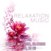 Relaxation Music Music for Massage Meditation Relaxation Sleep Spa Tai Chi and Soothing Lullabies to Help You Relax Meditate and Heal with Nature Sounds Hang Drum and Natural White Noise