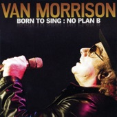 Van Morrison - If in Money We Trust