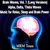 Brain Waves, Vol. 1: Alpha, Delta, Theta Waves Music for Relax, Sleep and Brain Power (Long Versions) - Mrm Team