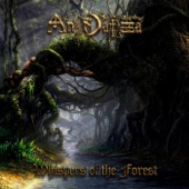 An Danzza - The Forest That Never Sleeps