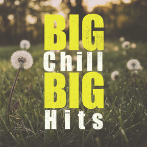 Various Artists - Big Chill Big Hit