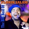 Best of Florin Salam, Florin Salam