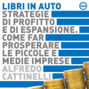 Alfredo Cattinelli - Strategie di profitto e di espansione artwork