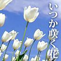 いつか咲く花