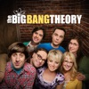 The Big Bang Theory, Season 8 image