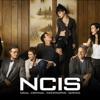 NCIS, Season 3 wiki, synopsis