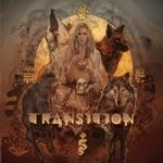 rigzin - Transition (feat. Random Rab)
