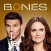 Bones, Season 9 - Synopsis and Reviews