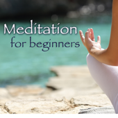 Meditation for Beginners – Ambient New Age Soothing Music for Relaxation Meditation, Yoga & Breathing