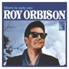 There Is Only One Roy Orbison (Remastered), Roy Orbison