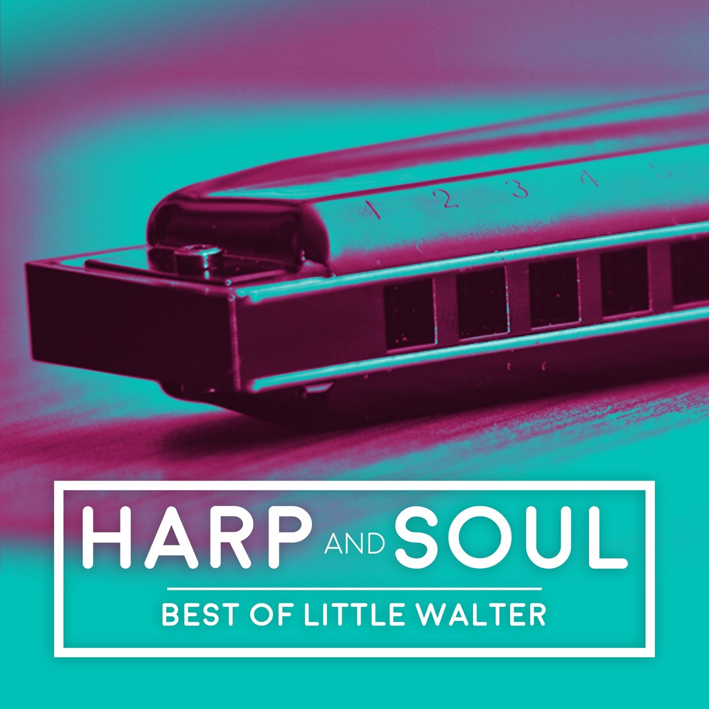 Harp and Soul - Best of Little Walter