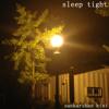 Sankarshan Kini - Sleep Tight artwork