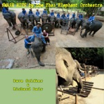 Thai Elephant Orchestra, Ken Butler, Don Ritter, Dave Soldier & Richard Lair - Trio for Theremin & Electric Keyboard