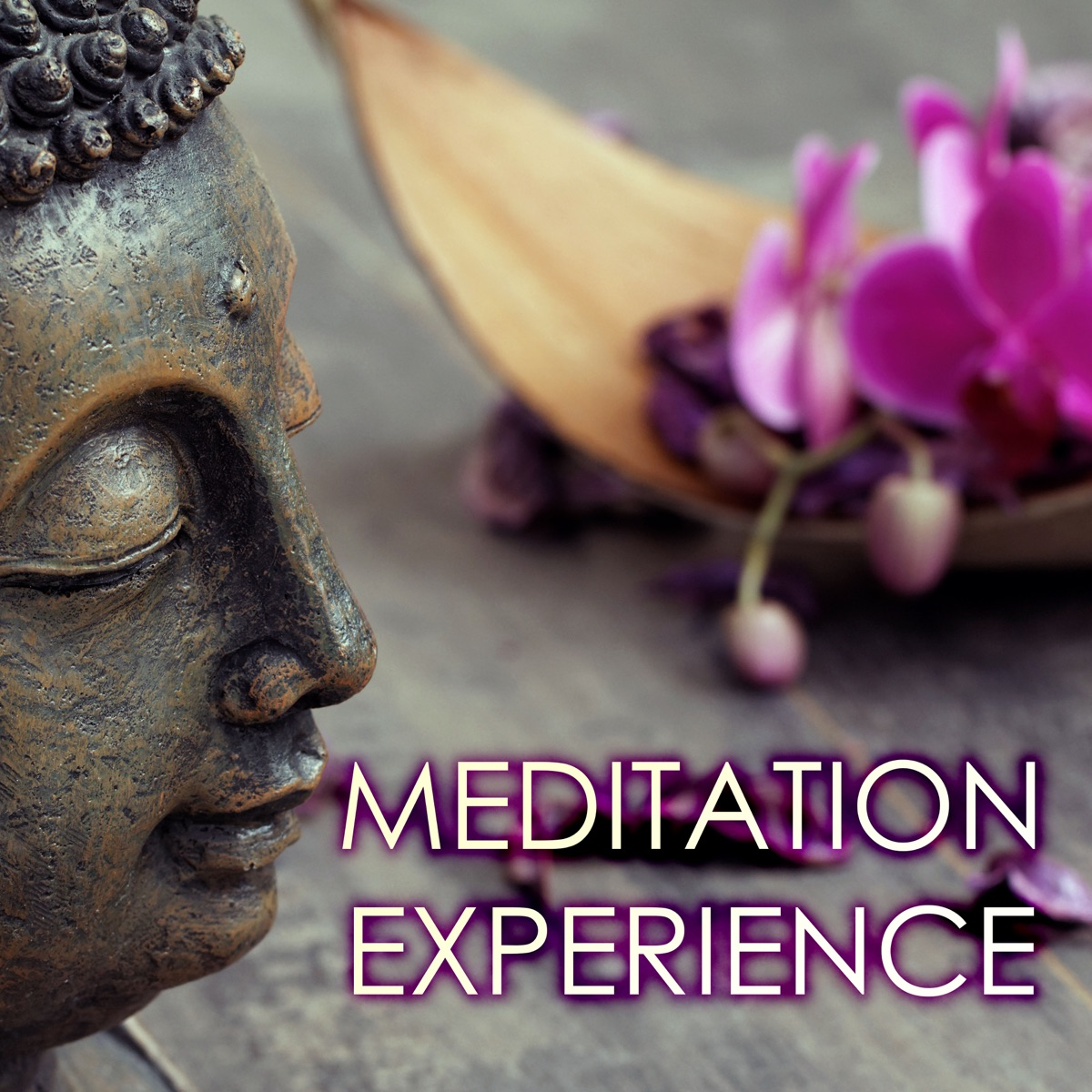 Meditation Experience - Pure Soothing Deep Sleep Music for