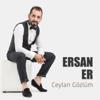 Ersan Er - Tanrım (Remix) artwork