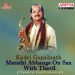 Vrukshavalli Amha Soyari Vanchare (Instrumental)