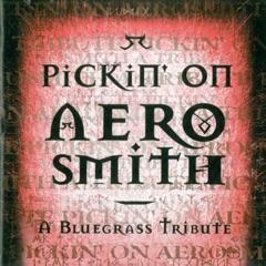 Pickin' On Aerosmith: A Bluegrass Tribute