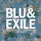 Blu & Exile - The Only One