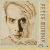 Peter Murphy - Indigo Eyes