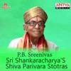 Sri Shankaracharya s Shiva Parivara Stotras