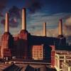 Animals, Pink Floyd